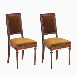 Jugendstil Stühle aus Nussholz & Samt, 19. Jh.