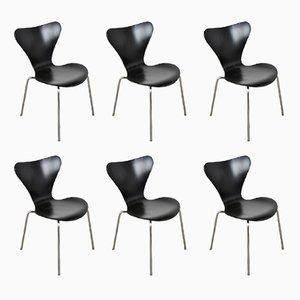 3107 Stühle von Arne Jacobsen für Fritz Hansen, 1971, 6er Set