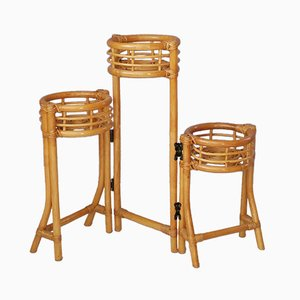 Rattan Foldable Plant Stand, 1960s