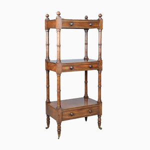 Antique Mahogany Display Stand, 1860s