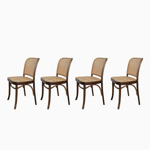 No. 811 Prague Chairs by Josef Hoffmann for FMG, 1960s, Set of 4