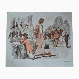 Poster scolastico vintage di MDI, Francia, anni '70