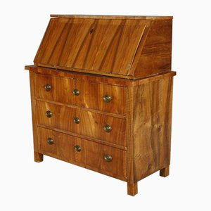 19th Century Walnut Biedermeier Secretaire