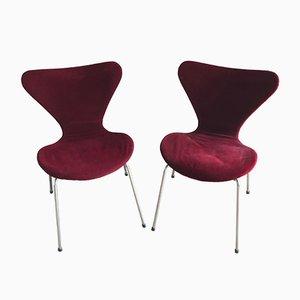 Modell 3107 Stühle von Arne Jacobsen für Fritz Hansen, 1955, 2er Set