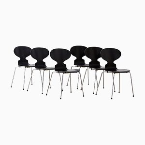 Chaises Ant par Arne Jacobsen, années 50, Set de 6