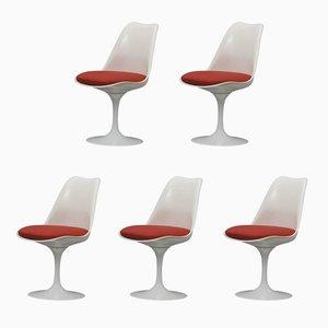 Sillas giratorias Tulip de Eero Saarinen para Knoll Inc., años 60. Juego de 5