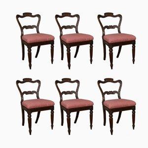 Chaises de Salon George IV en Palissandre Simulé, Set de 6
