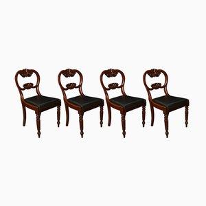 Sillas estilo William IV antiguas de caoba. Juego de 4