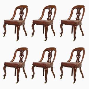 Chaises de Salon en Acajou, 1870s, Set de 6