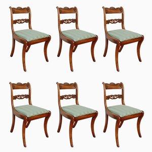 Chaises de Salle à Manger Regency en Acajou, 1830s, Set de 6