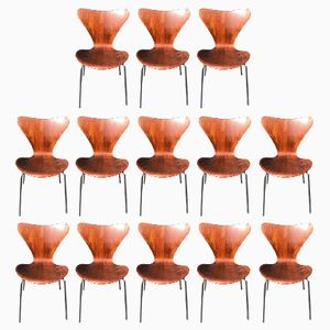 3107 Chairs by Arne Jacobsen, 1960s, Set of 13