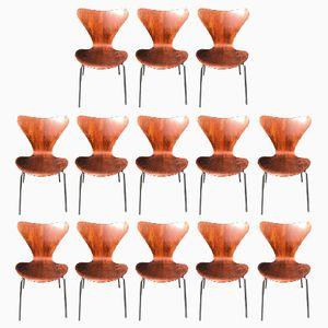 Sedie nr. 3107 di Arne Jacobsen, anni '60, set di 13