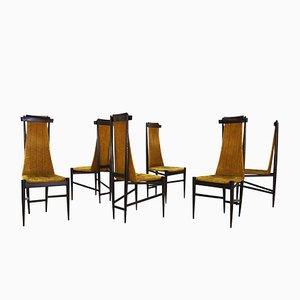 Chaises par Sergio Rodrigues pour Isa Bergamo, 1950s, Set de 6