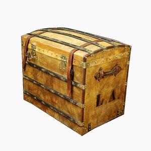Vintage Parchment Trunk, 1930s