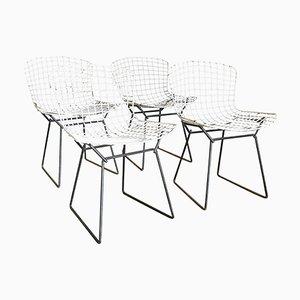 Esszimmerstühle aus Metalldraht von Harrie Bertoia für Knoll International, 1952, 4er Set