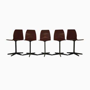 Chaises de Pagholz, Set de 5