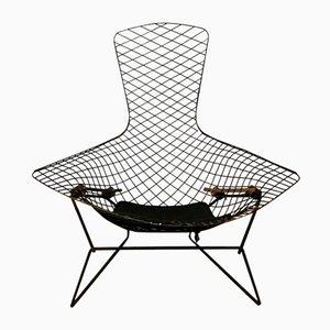 Schwarzer Vintage Bird Stuhl von Harry Bertoia für Knoll International, 1952