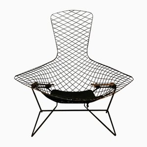 Vintage Black Bird Chair by Harry Bertoia for Knoll International, 1952