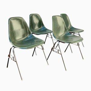 Sillas apilables DSS de fibra de vidrio de Ray & Charles Eames para Herman Miller, años 50. Juego de 4