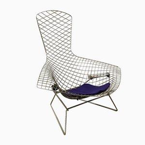 Chrome Bird Stuhl von Harry Bertoia für Knoll International, 1952