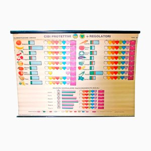 Vintage Nutritional Educational Table from Paravia, 1940s