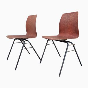Vintage Stühle aus Pagholz, 1960er