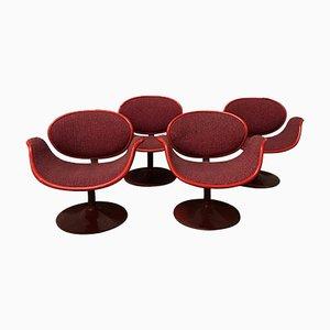 Sillas Tulip de Pierre Paulin para Artifort, años 60. Juego de 4