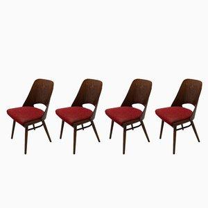 Mid-Century Esszimmerstühle aus Bugholz von Radomír Hofman für UP Závody, 1960er, 4er Set