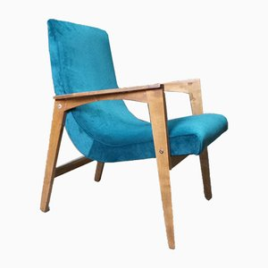 Mid-Century Easy Chair, 1960s