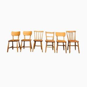 Chaises de Salon Mid-Century en Bois de Hêtre, Set de 6