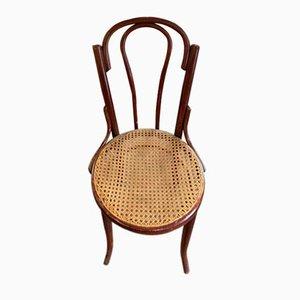 Antike Wiener Stühle von Wesche, 6er Set