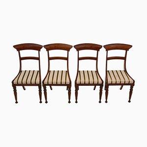 Antike Regency Esszimmerstühle aus Palisander, 4er Set