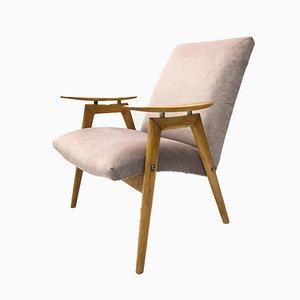Vintage Sessel mit violettem Samtbezug & Gestell aus Bugholz von TON, 1960er