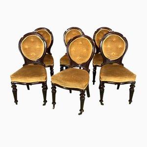 Viktorianische Stühle mit Gestell aus Mahagoni, 19. Jh., 6er Set