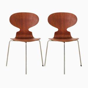 Sillas Myran de Arne Jacobsen para Fritz Hansen, años 50. Juego de 2