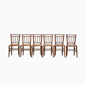Bistrostühle mit Sitz aus Schilfrohr, 1930er, 6er Set