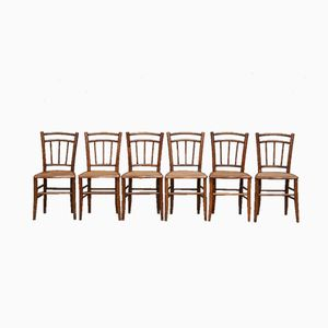 Cane Bistro Chairs, 1930s, Set of 6