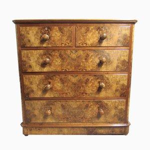 Antique Burr Walnut Dresser