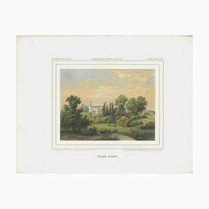 Lithographie Colorée Palace Sulibórz Antique par A. Duncker