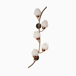 Frosted Glass & Brass Branch & Berries Wall Light, 1960s