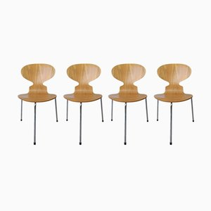 Model 3100 Ant Chairs by Arne Jacobsen for Fritz Hansen, 1995, Set of 4