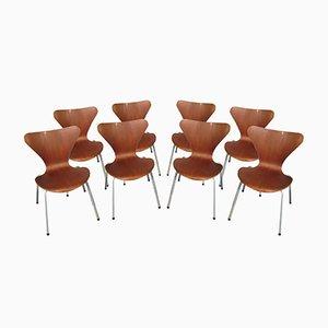 Vintage Esszimmerstühle von Arne Jacobsen für Fritz Hansen, 1955, 8er Set