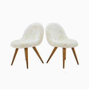 Shell Esszimmerstühle von Miroslav Navratil, 1960er, Set of 4