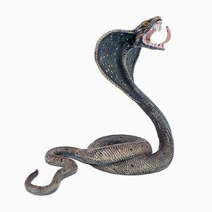 Cobra antica dipinto a freddo in bronzo di Franz Xavier Bergman