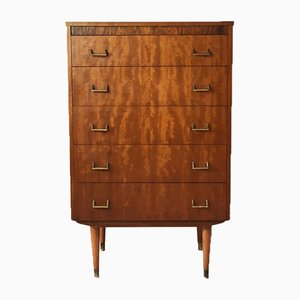 Mid-Century Belgian Tall Chest of Drawers,1960s