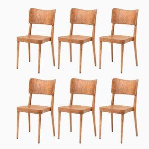 Chaises de Salle à Manger Empilables en Contreplaqué et Hêtre de Horgenglarus, 1960s, Set de 6