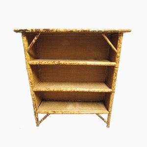 Antike Bücherregale aus Bambus