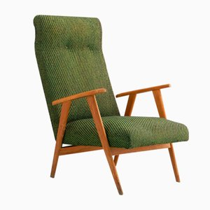 Mid-Century French Lounge Chair, 1950s