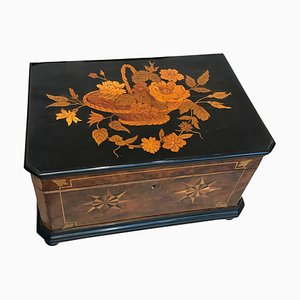 Biedermeier Ebony & Walnut Box, 1850s