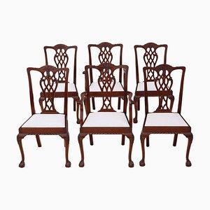 Chaises de Salon Vintage Renouveau Géorgien en Acajou, Set de 6